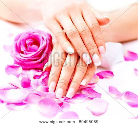 Manicure, Hands spa. Beautiful female hands, soft skin, beautiful nails with pink rose flowers petals. Healthy Woman hands. Beauty salon. Treatment. Beautiful woman's nails with french manicure