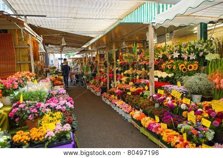 DUSSELDORF, GERMANY - SEP 16: street market on September 16, 2014. Dusseldorf is the capital city of the German state of North Rhine-Westphalia and centre of the Rhine-Ruhr metropolitan region