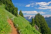 stock photo of olympic mountains  - Hiking trail in the mountains - JPG