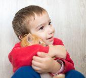 image of kitty  - Portrait of child holding yellow kitty cat - JPG
