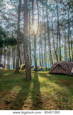 Tents Camping Whit The Beautiful Nature In The Evening.