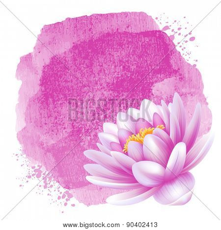 Vector beautiful pink water lily or lotus flower and watercolor background. Isolated on white background.