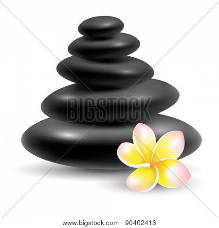 Spa still life with black massage stones and frangipani flower. Vector illustration. Isolated on white background.