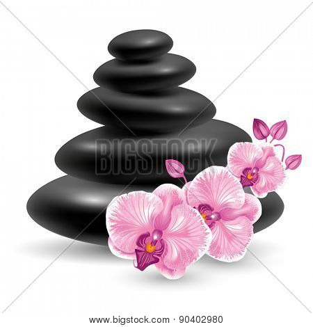 Spa still life with black massage stones and pink orchids flower. Vector illustration. Isolated on white background.