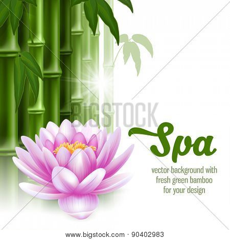 Vector card on spa theme with bamboo, and lotus on white background.