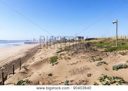 Dune Rehabilitation Taking Place On Durban's Golden Mile, South Africa