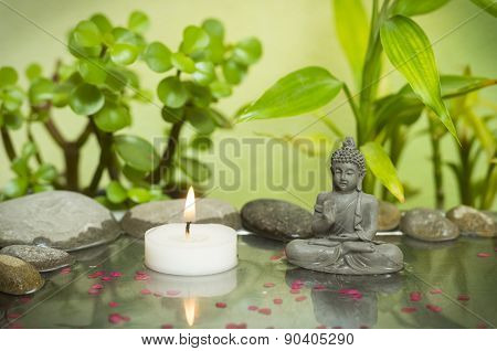Relaxing zen garden