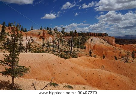 Landscape at Bryce Canyon National Park