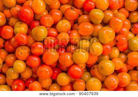 Tomato Texture