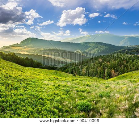 Landscape With Valley And Forest In High Mountains At Sunrise