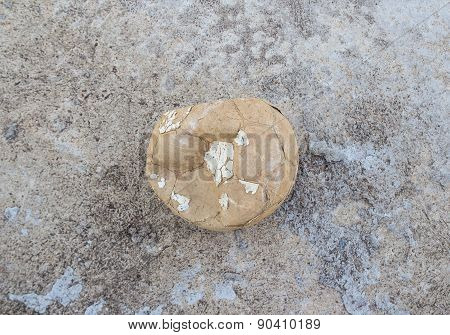 Old Soccer Ball On Cement Floor