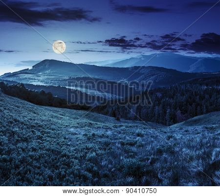 Landscape With Valley And Forest In High Mountains At Night