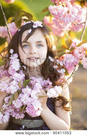 Small Girl Amid Cherry Blossom