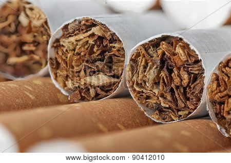 Tobacco In Cigarettes With Brown Filter