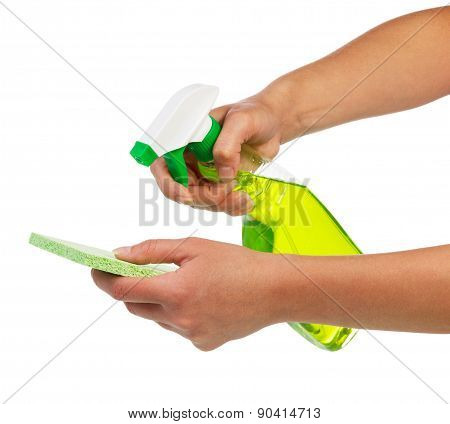 Hands with Bottle and sponge