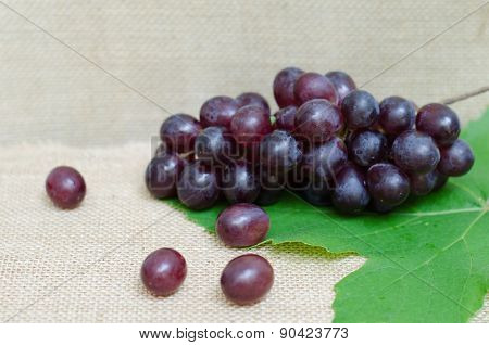 Bunch Of Ripe Grapes On Sackcloth
