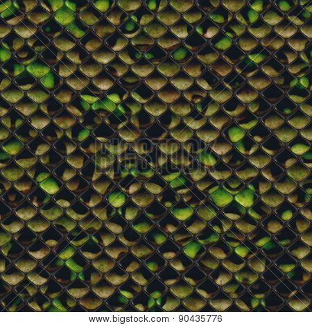 Seamless Reptile Skin Background