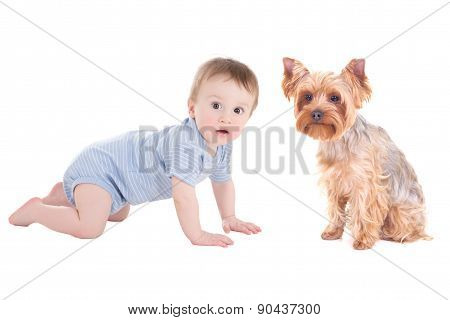 Funny Baby Boy Toddler And Yorkshire Terrier Puppy Isolated On White