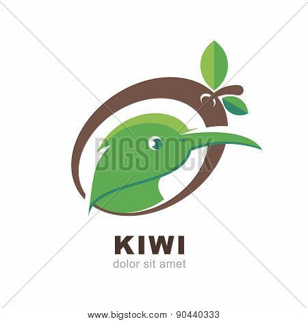 Head Of Kiwi Bird In Shape Of Kiwi Fruit With Green Leaves, Isolated On White Background. Vector Log