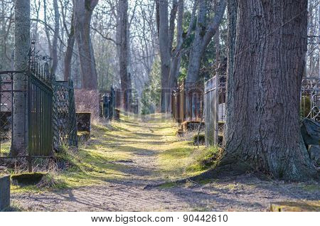 Vanishing Footpath And Fences At Cemetery