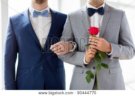 people, homosexuality, same-sex marriage and love concept - close up of happy male gay couple with red rose flower holding hands on wedding