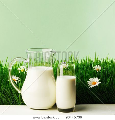 Milk in jar and glass on fresh grass meadow with chamomiles