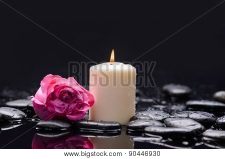 Beautiful pink rose with candle and therapy stones