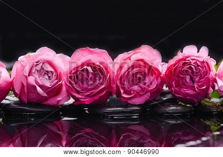 Pink row of rose with therapy stones