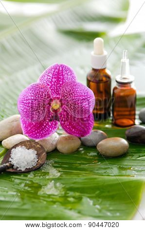 spa setting with pebbles ,stones,oil , orchid and banana leaf