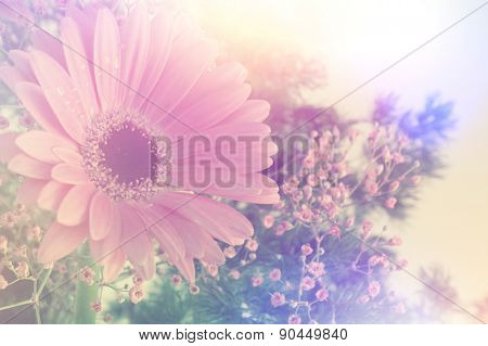Gerbera daisy image with vintage retro effect