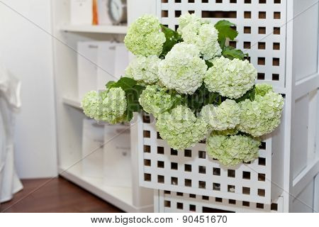 Hydrangea in the night table drawer