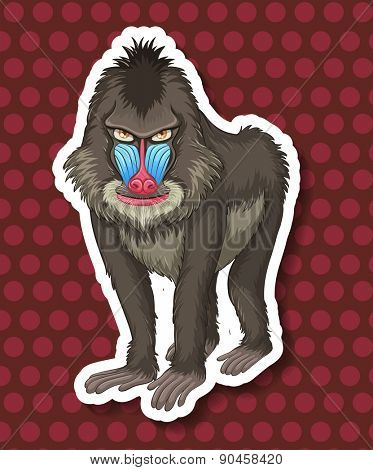 Closeup baboon with polka dot background