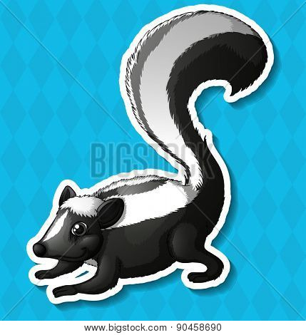 Closeup happy skunk with blue background