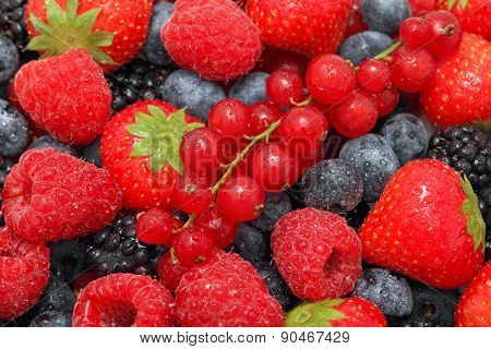 Close-up View On Pile Of Different Berries With Water Drops