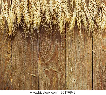 Wheat spikes on wooden cutting board