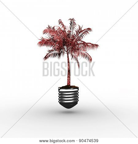 Empty light bulb against tropical palm tree with green foilage