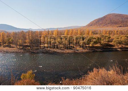 China's Inner Mongolia Caihe in autumn