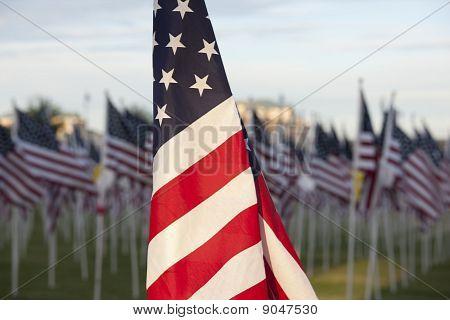 Flag H