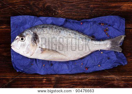 Culinary Seafood Eating.