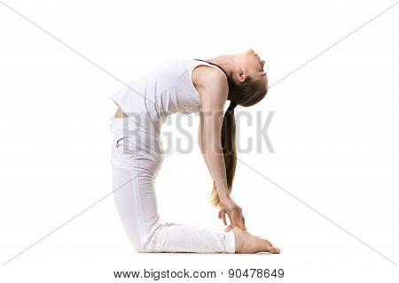 Yoga Asana Ustrasana