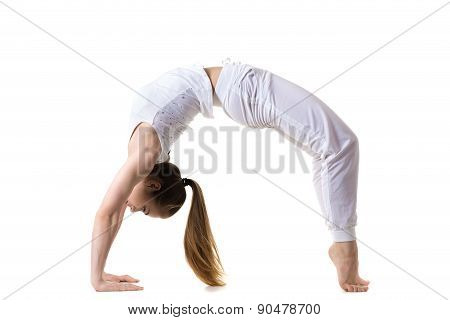 Wheel Yoga Pose