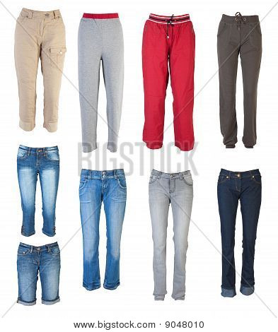 Female Pants Collection