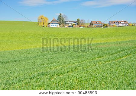 The Swiss Countryside