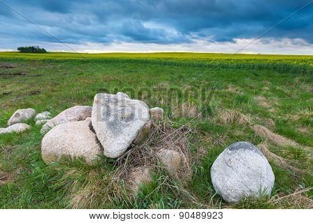 Big Stones On Green Field