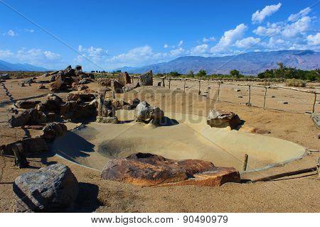 Forgotten Rock Garden