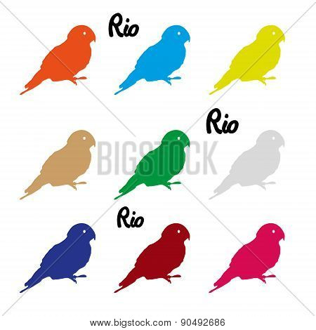 Colors Parrots Icons Symbol And Rio Text