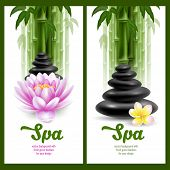 image of frangipani  - Vector banners on spa theme with bamboo - JPG