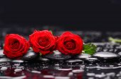 pic of stone-therapy  - Lying down red three rose with therapy stones  - JPG