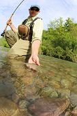 pic of trout fishing  - Fisherman catching brown trout with fishing line in river - JPG