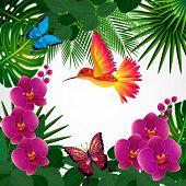 image of colibri  - Floral design background - JPG